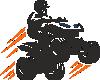 Logo Quady Gorzów